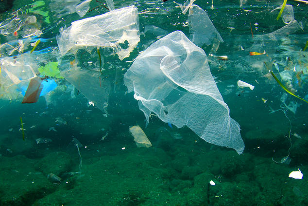 plastic-pollution