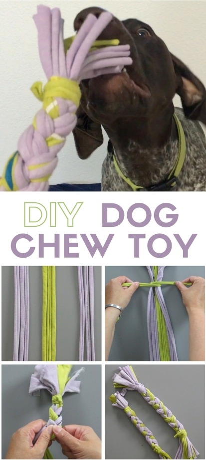 DIY-dog-chew-toy-1.jpg
