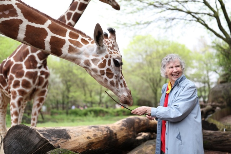 10.Anne Innis Dagg feeding giraffe_Photo Credit_Elaisa Vargas.jpg